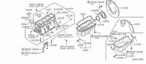 Nissan Stanza Engine Expansion Plug  Block  Cylinder  Rear
