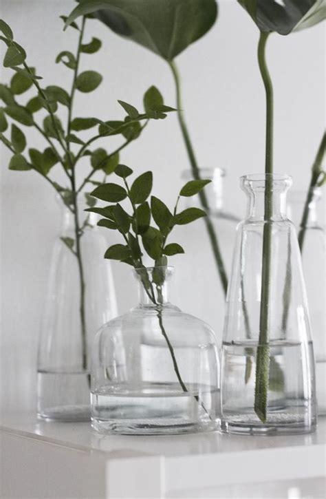 wedding theme minimalism        plant decor