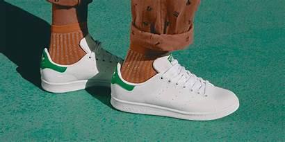 Clean Shoes Sneakers Sneaker Wow