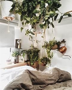 Zimmerpflanzen Für Schlafzimmer : h ngepflanze zimmerpflanzen urban jungle ~ A.2002-acura-tl-radio.info Haus und Dekorationen