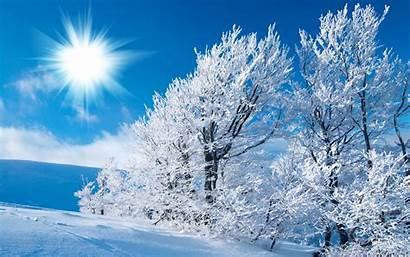 Winter Scene Scenes Desktop Wallpapers Snow Background