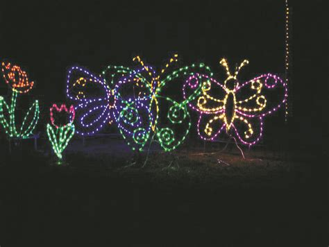 shimmering christmas lights light displays around town will shine bright this season osprey observer