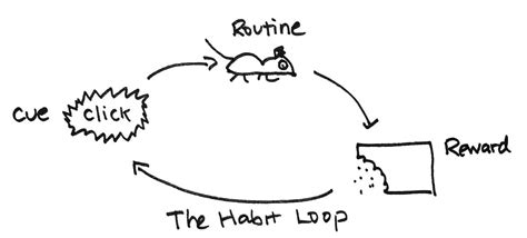 how habits are formed in the brain why all diets fail and why you don t need a diet to lose