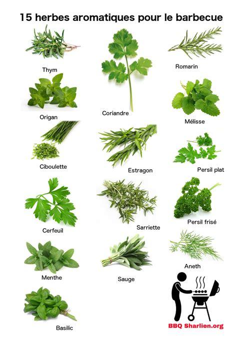 herbes aromatiques cuisine 15 herbes aromatiques fraiches pour les grillades