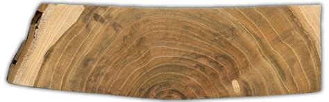 will cupped hardwood floors flatten drying wood at home the wood database