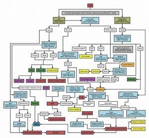 Complicated Flowchart - Create A Flowchart
