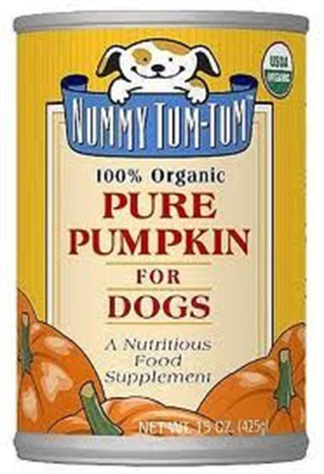 Using Pumpkin For Diarrhea In Dogs by My Dog Mister