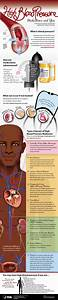 High Blood Pressure Medications And You  Infographic