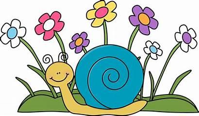 Snail Flowers Clip Flower Clipart Graphics Mycutegraphics