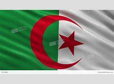 Flag Of Algeria Seamless Loop Stock Animation 3514856