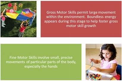 Motor Gross Skills Fine Parts Activities