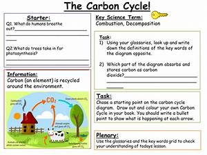 Sen Key Stage 3  Carbon Cycle By Alaina93