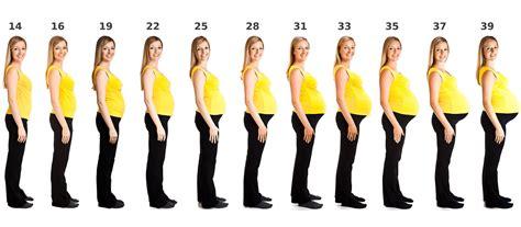 Schwangerschaftswoche alle Infos - 14 SSW