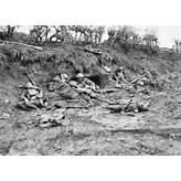 Battle of Passchendaele - 1917 - Mat McLachlan Battlefield Tours