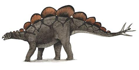 species   science paleontology