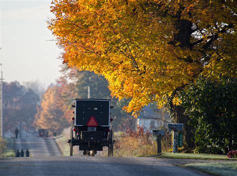 ohio amish fall foliage  bank kansas