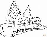 Pine Tree Coloring Trees Outline Pages Christmas Drawing Forest Printable Longleaf Clipart Rain Evergreen Template Clip sketch template