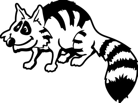 Free Raccoon Clipart Pictures