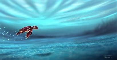 Turtle Water Wallpapers 5k Artwork Sea 4k