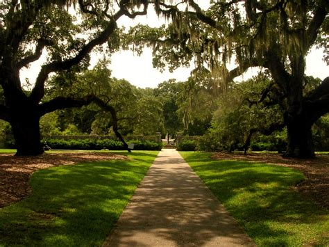 Brookgreen Gardens by Fall In With Summer At Brookgreen Gardens
