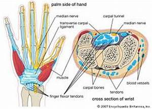 Carpal Tunnel Pain Relief