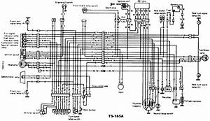 Chevy Wiring Diagrams Site