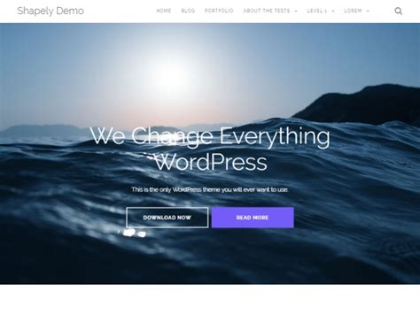 Shapely Theme Free Photography Themes Free Website Templates