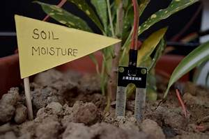 How To Interface Soil Moisture Sensor With Evive