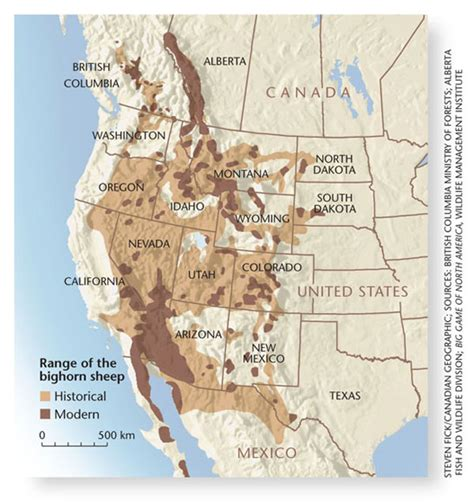 range map for the bighorn sheep wildlife of bc
