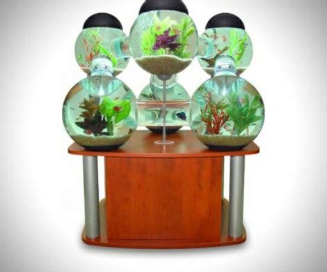 tolles labyrinth aquarium