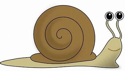 Snail Clipart Snails Escargot Clip Cartoon Cliparts