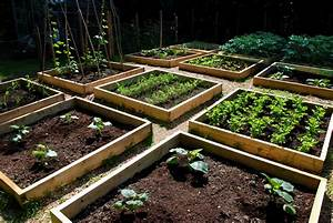 Raised Bed Garden Plans   Choosing The Latest Bed Frames
