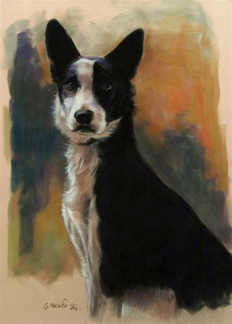 No Shed Dog Breeds Large by Black And White Medium Dogs Dog Breeds Picture