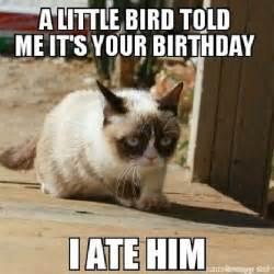 grumpy cat birthday caterville grumpy cat memes