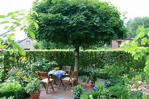 Gartengestaltung Unter Bäumen : garten anlegen gestaltungstipps f r einsteiger mein sch ner garten ~ Yasmunasinghe.com Haus und Dekorationen