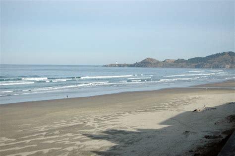 On The Beach! Newport Oregon   Beachcombers NW