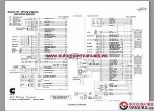 Ism Fuse Diagram  U2013 Daily Update Wiring Diagram Cummins Isx