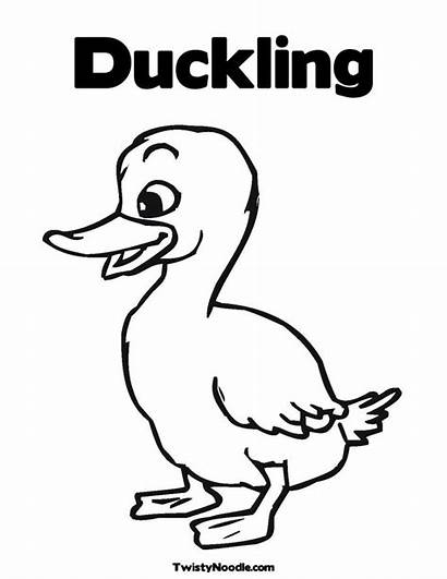 Duckling Coloring Pages Duck Outline Clip Clipart
