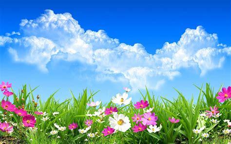 Spring Background (52+ Images