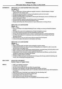 mid level java developer resume samples velvet jobs With sample resume for mid level position