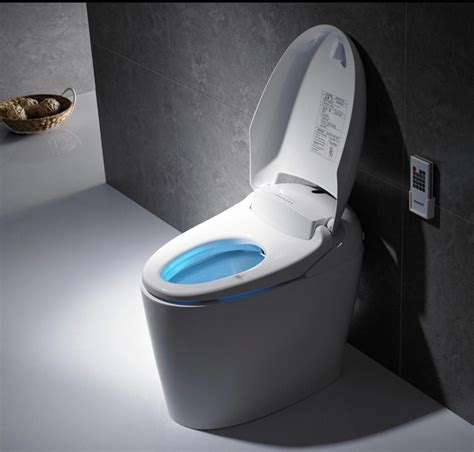 Toilet With Bidet Built In by Homeofficedecoration Best Toilet With Built In Bidet