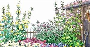 Blumenbeete Zum Nachpflanzen : ein bauerngarten beet zum nachpflanzen kr uter pinterest garden plants und garten ~ Yasmunasinghe.com Haus und Dekorationen