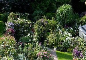Sichtschutz Pflanzen Pflegeleicht : ideen f r einen sichtschutz aus pflanzen seite 1 ~ A.2002-acura-tl-radio.info Haus und Dekorationen