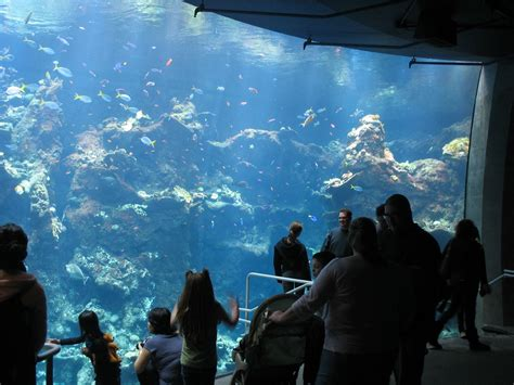 monterey bay aquarium be seated