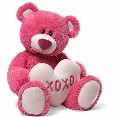 Teddy Bear Drive Pink Fundraisers