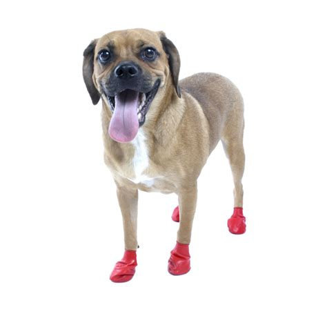 Pawz Disposable Dog Booties 12pk  Small Red Baxterboo