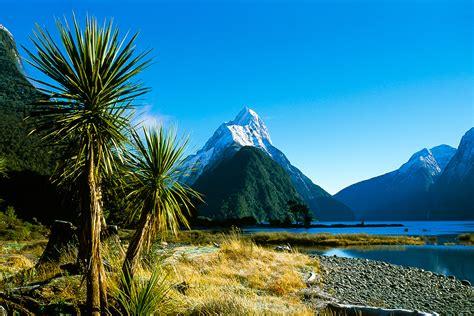 neuseeland von aussteigern und kiwis alles leinwand