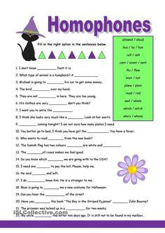 amazing homophone activities images teaching reading