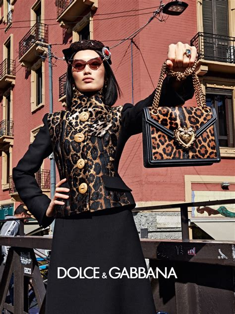 dolce gabbana fall  campaign fashion  rogue