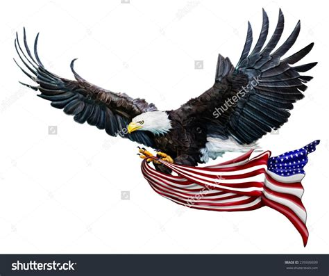 digital painting bald eagle flying carrying stock